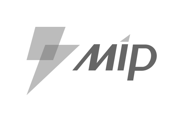 百度搜索 MIP 闪电标志下线